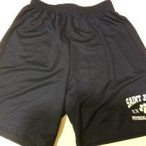 mesh pe shorts 2014